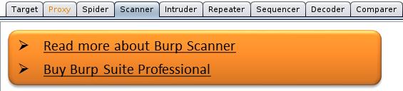 burpsuite_5_scanner
