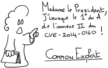 0xma-Common-Exploit
